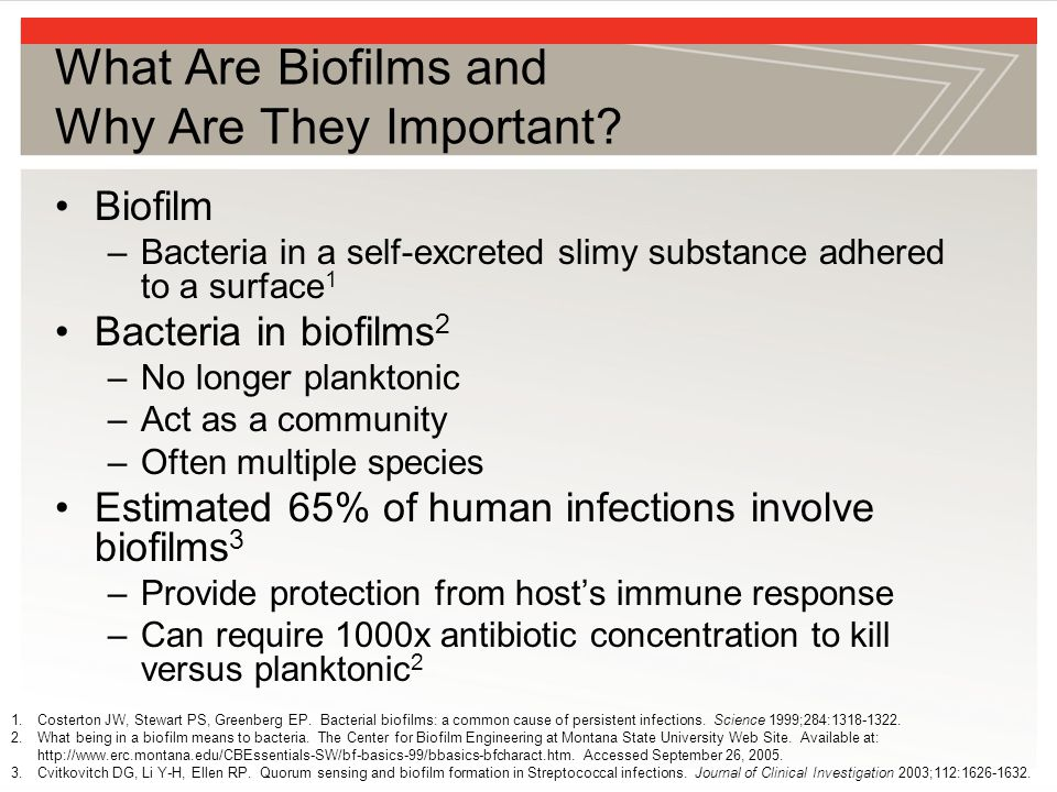 What Are Biofilms and Why Are They Important