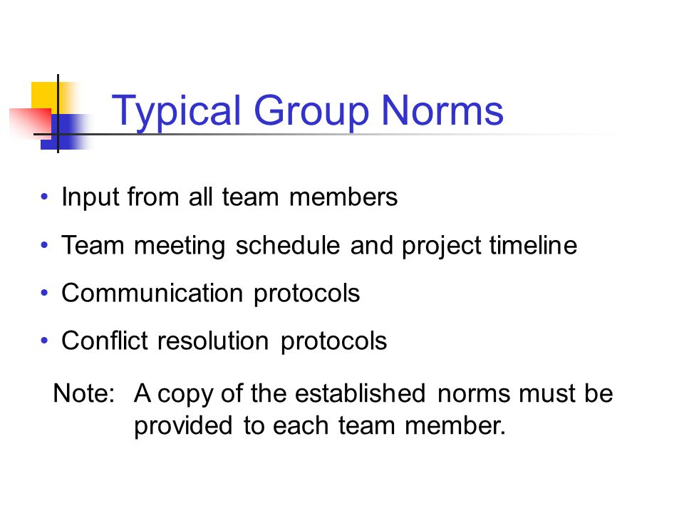Typical Group Norms Input from all team members