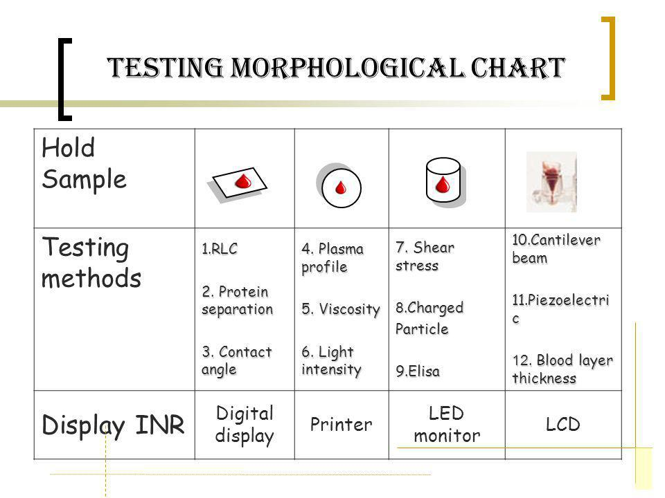 Testing Morphological Chart