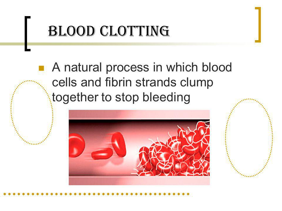 Blood Clotting A natural process in which blood cells and fibrin strands clump together to stop bleeding.