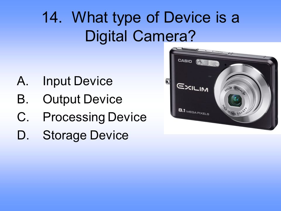 14. What type of Device is a Digital Camera