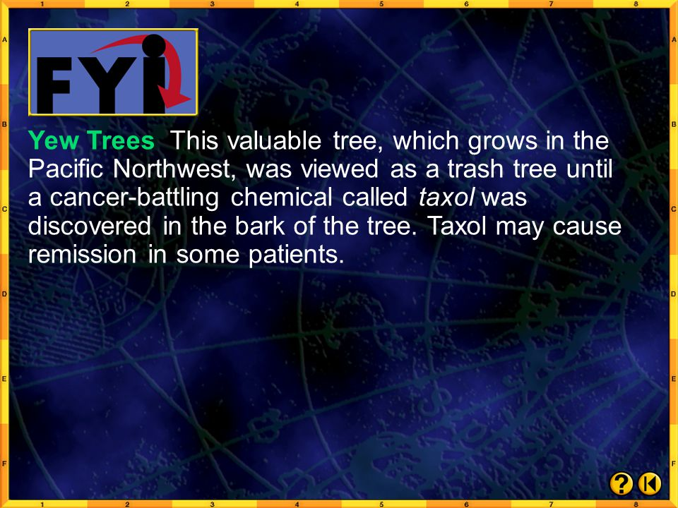 Yew Trees This valuable tree, which grows in the Pacific Northwest, was viewed as a trash tree until a cancer-battling chemical called taxol was discovered in the bark of the tree. Taxol may cause remission in some patients.