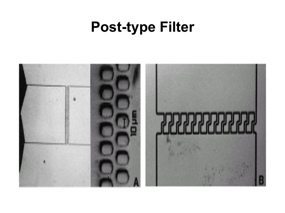 Post-type Filter