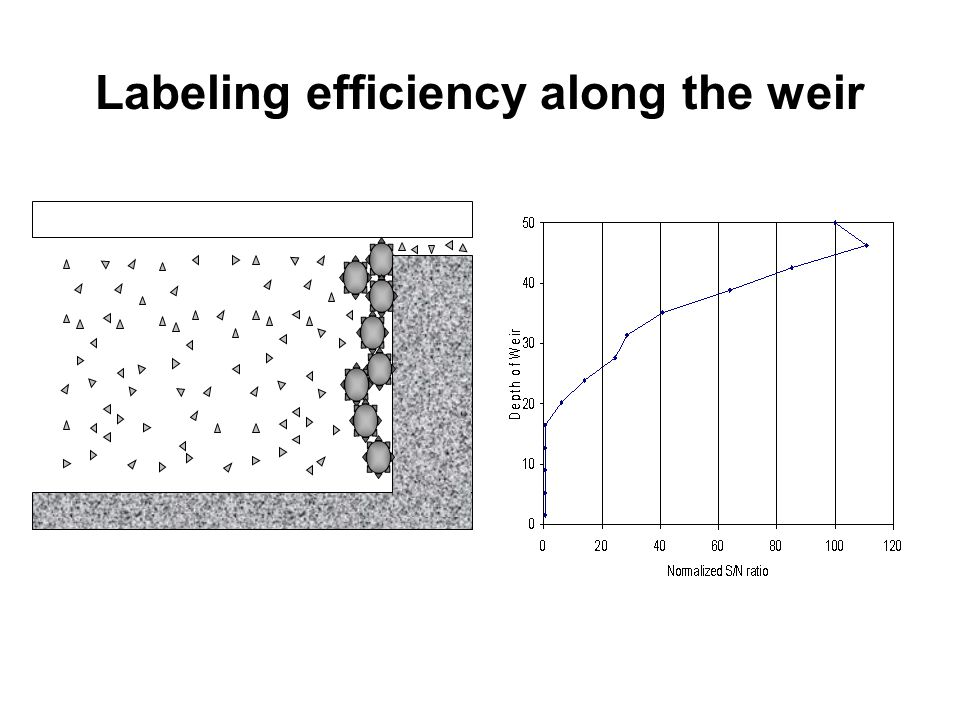 Labeling efficiency along the weir