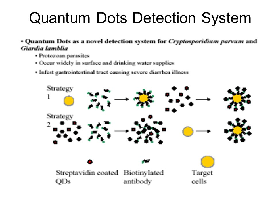 Quantum Dots Detection System