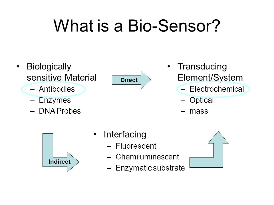 What is a Bio-Sensor Biologically sensitive Material