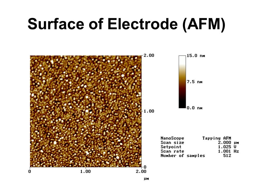 Surface of Electrode (AFM)