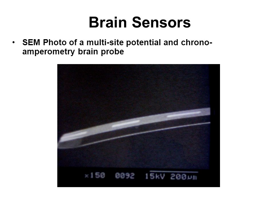 Brain Sensors SEM Photo of a multi-site potential and chrono-amperometry brain probe.