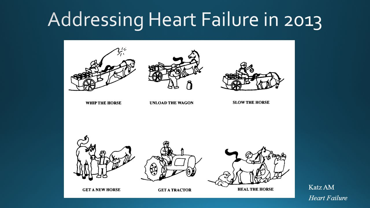 Addressing Heart Failure in 2013