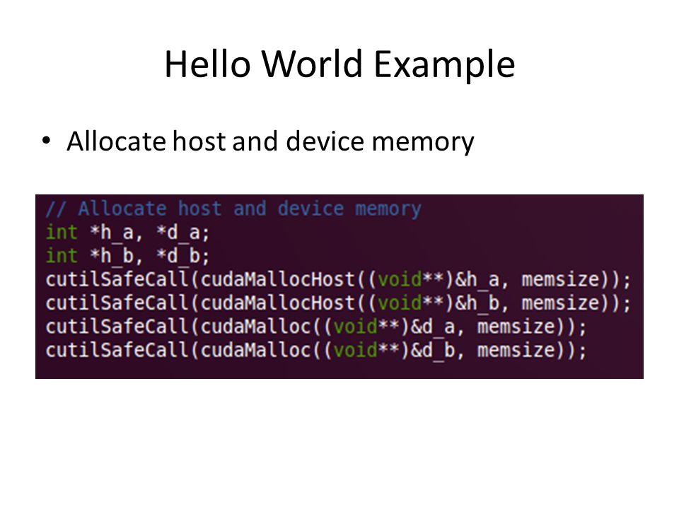 Hello World Example Allocate host and device memory