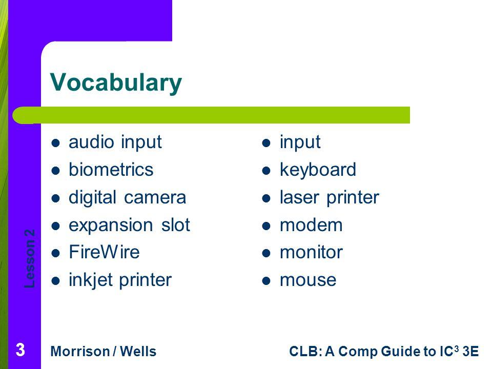 Vocabulary audio input biometrics digital camera expansion slot