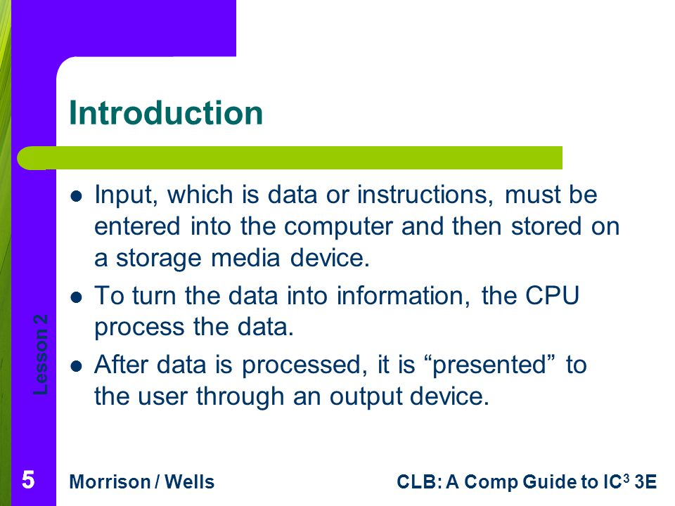 Introduction Input, which is data or instructions, must be entered into the computer and then stored on a storage media device.