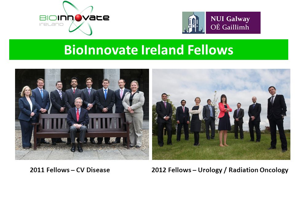 BioInnovate Ireland Fellows