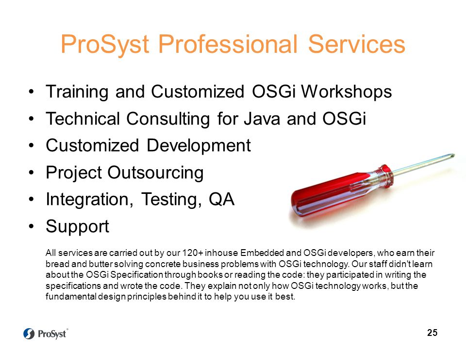 ProSyst Professional Services