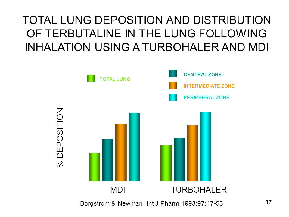 TOTAL LUNG DEPOSITION AND DISTRIBUTION OF TERBUTALINE IN THE LUNG FOLLOWING INHALATION USING A TURBOHALER AND MDI