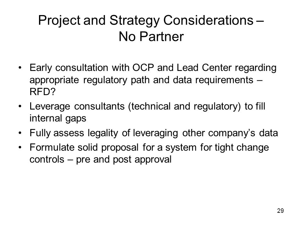 Project and Strategy Considerations – No Partner