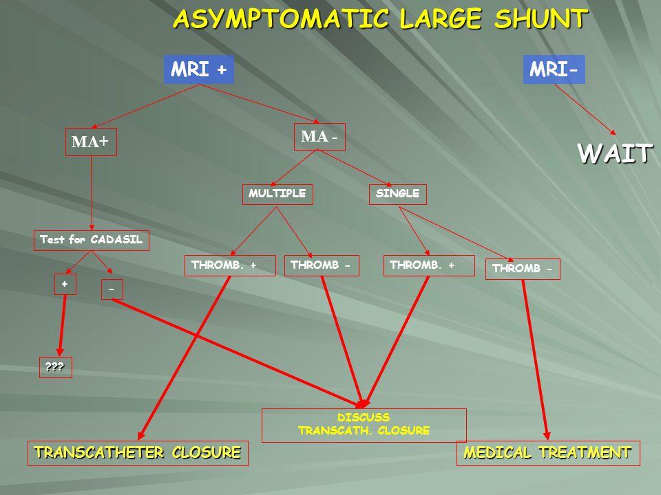 ASYMPTOMATIC LARGE SHUNT