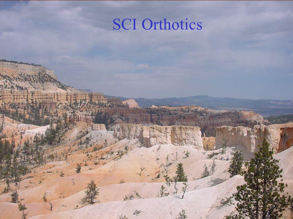 SCI Orthotics SCI Orthotics