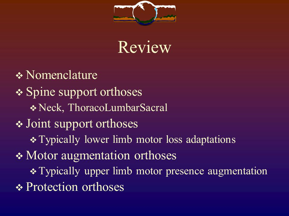 Review Nomenclature Spine support orthoses Joint support orthoses