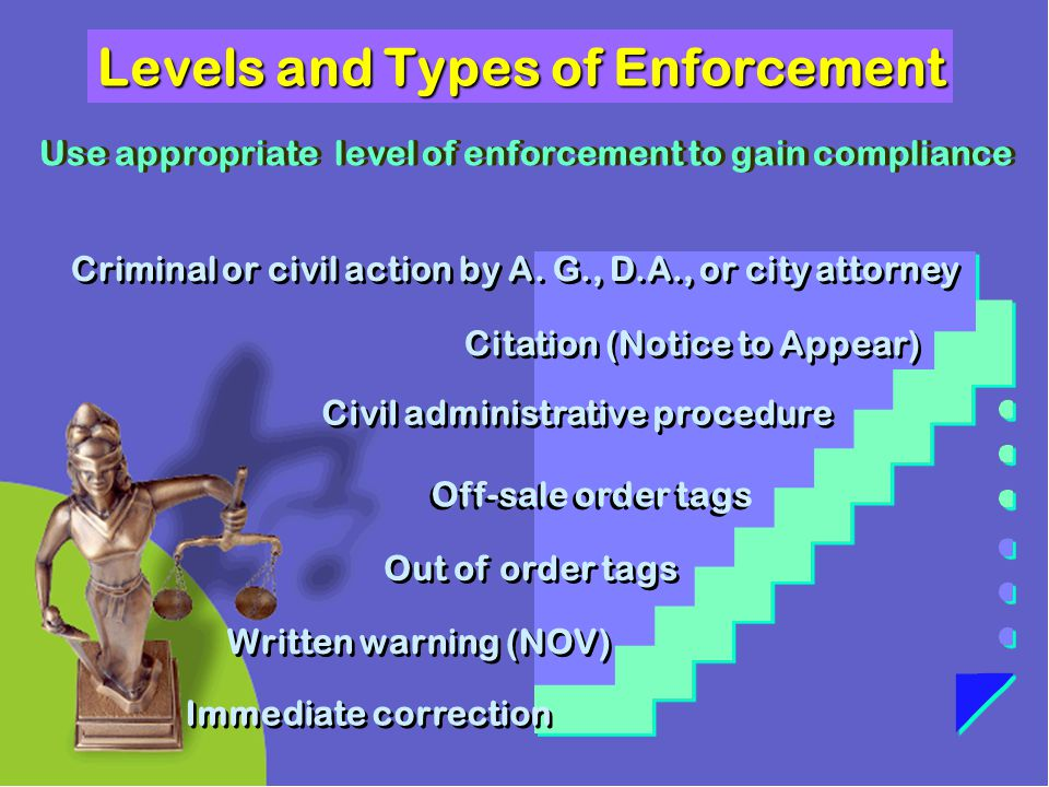 Levels and Types of Enforcement