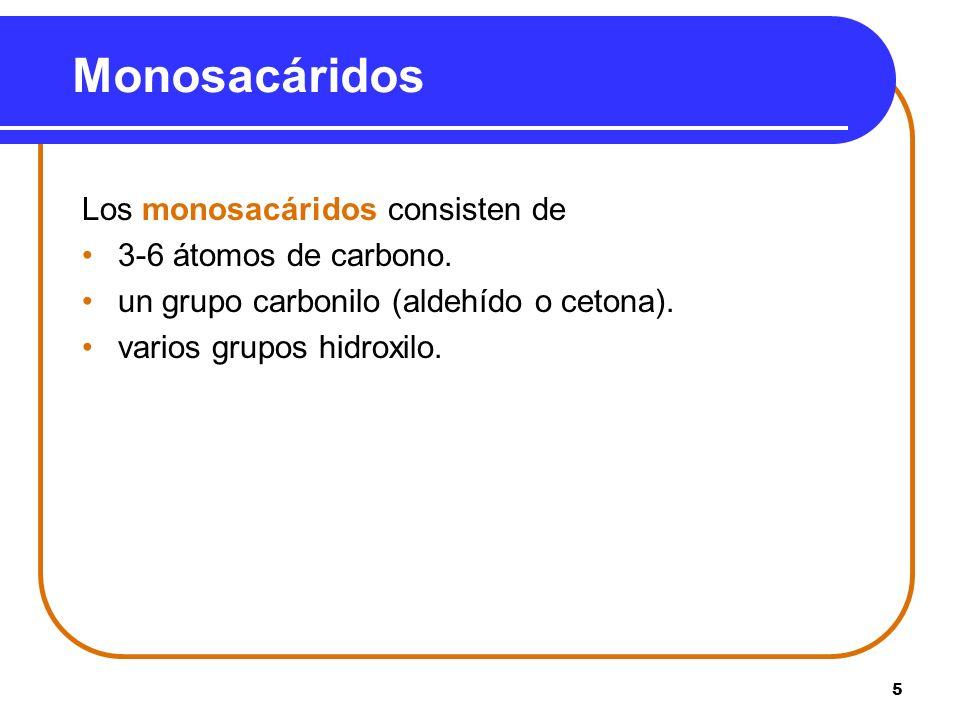 Monosacáridos Los monosacáridos consisten de 3-6 átomos de carbono.