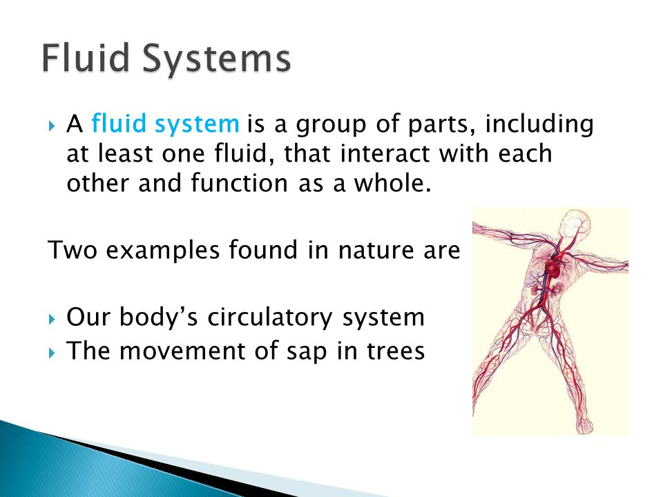 Fluid Systems A fluid system is a group of parts, including at least one fluid, that interact with each other and function as a whole.