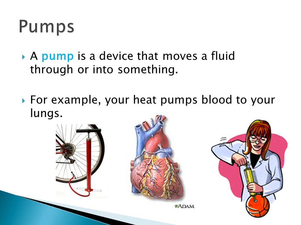 Pumps A pump is a device that moves a fluid through or into something.