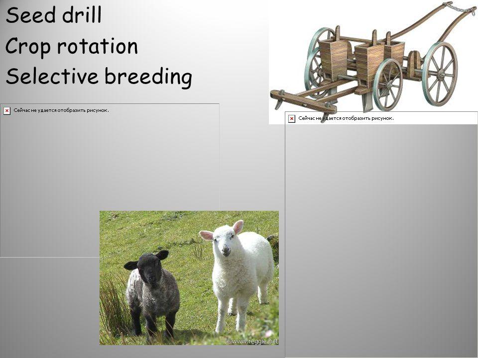 Seed drill Crop rotation Selective breeding
