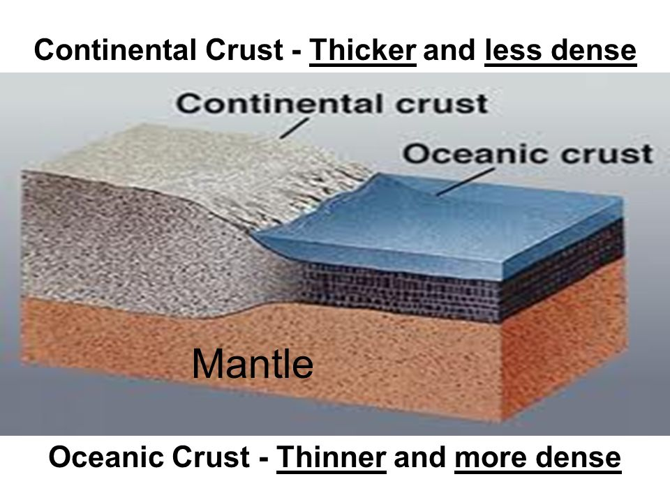 Mantle Continental Crust - Thicker and less dense