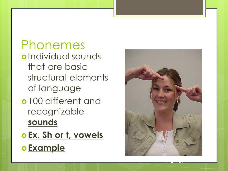 Phonemes Individual sounds that are basic structural elements of language. 100 different and recognizable sounds.
