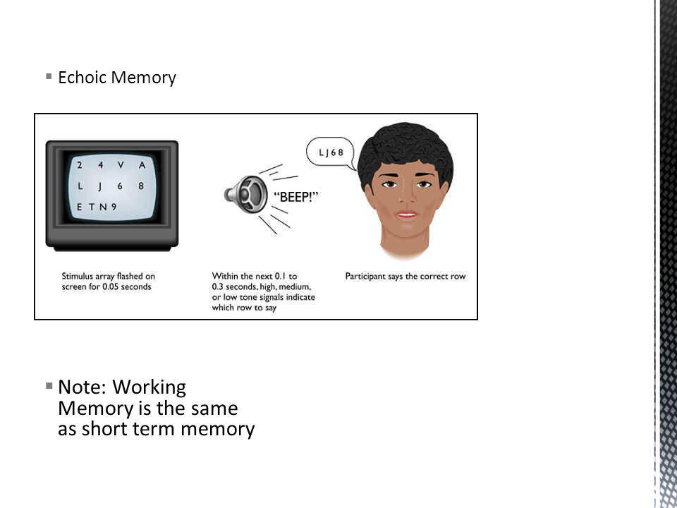 Note: Working Memory is the same as short term memory