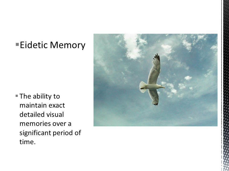 Eidetic Memory The ability to maintain exact detailed visual memories over a significant period of time.