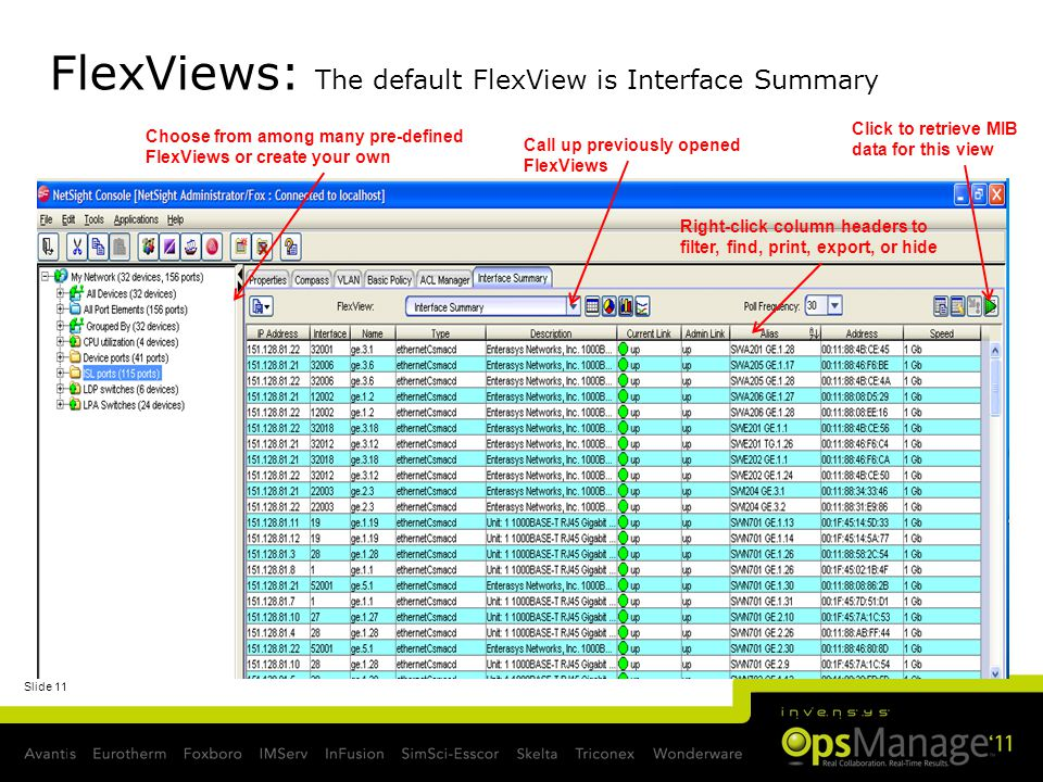 FlexViews: The default FlexView is Interface Summary