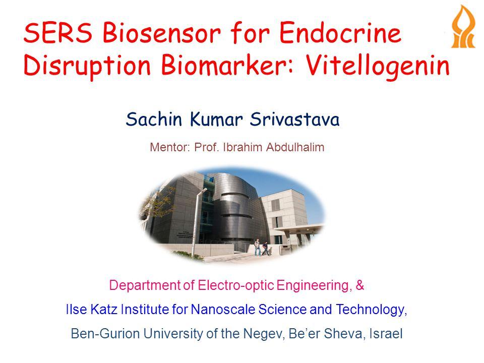 SERS Biosensor for Endocrine Disruption Biomarker: Vitellogenin