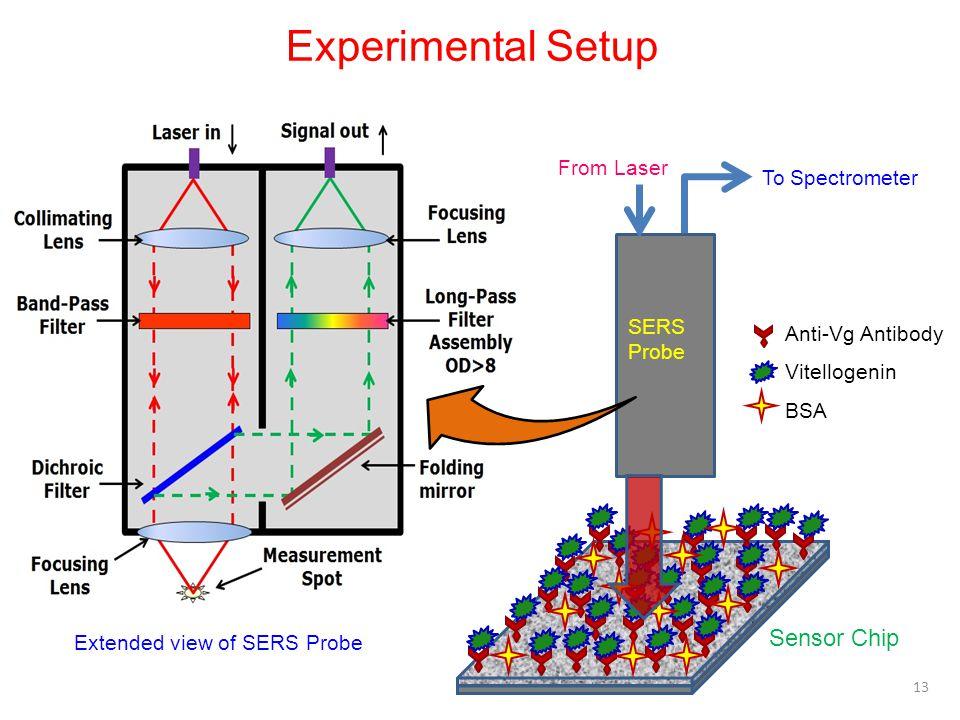 Experimental Setup Sensor Chip From Laser To Spectrometer SERS Probe