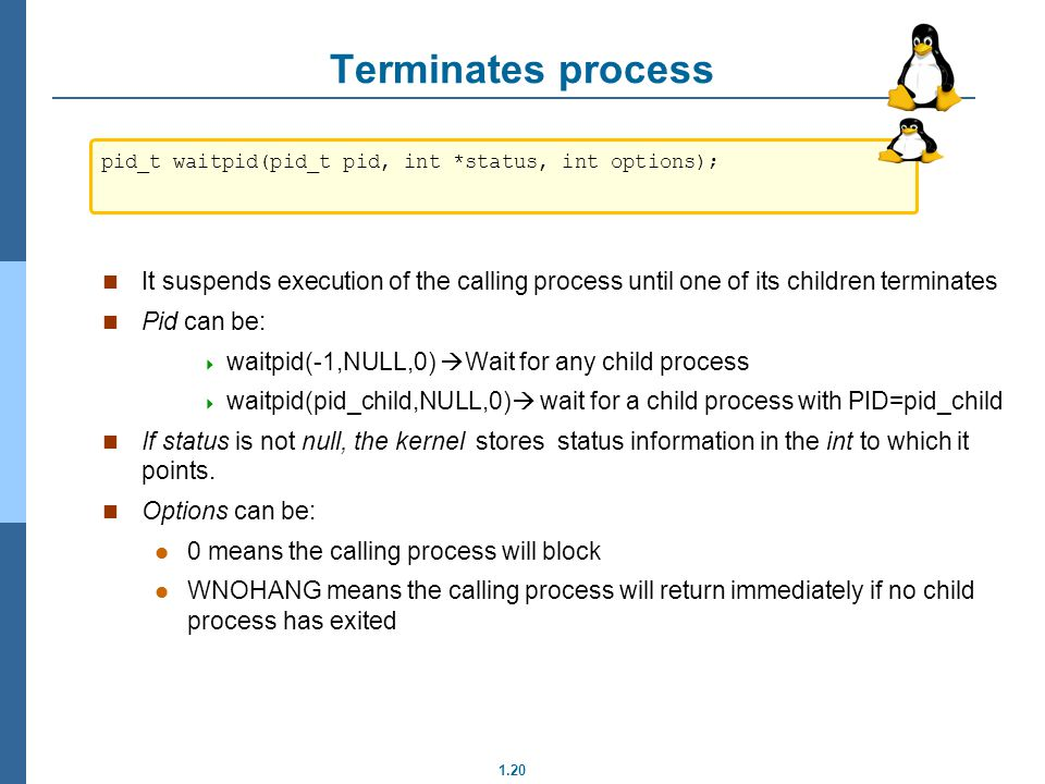 Terminates process pid_t waitpid(pid_t pid, int *status, int options);