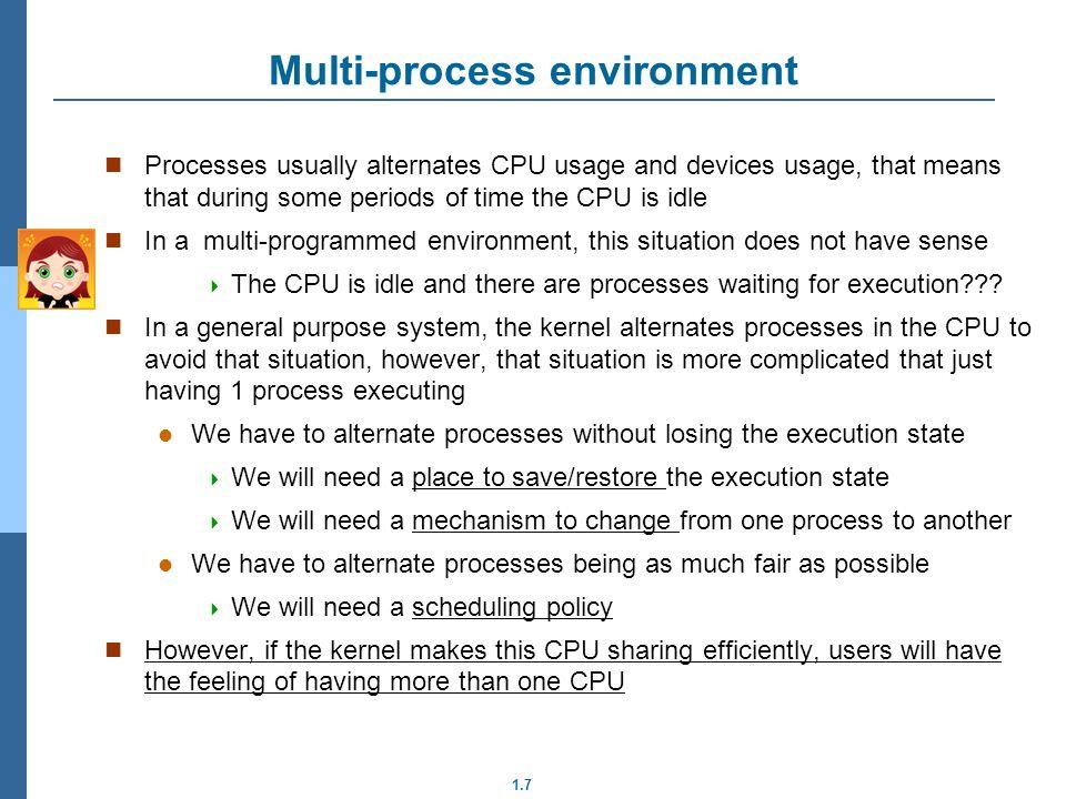 Multi-process environment