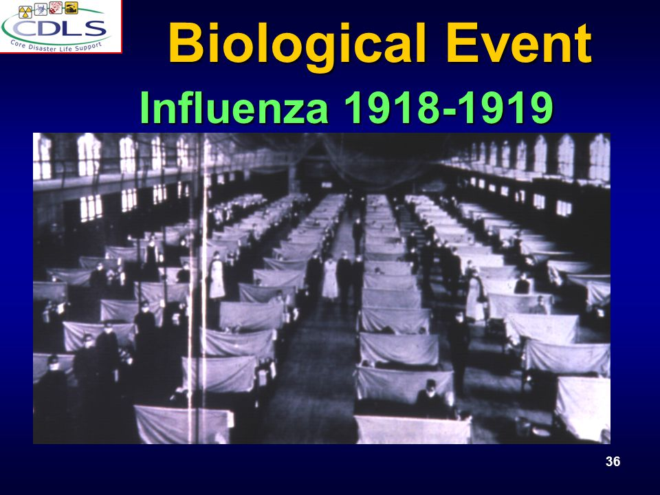 Biological Event Influenza 1918-1919