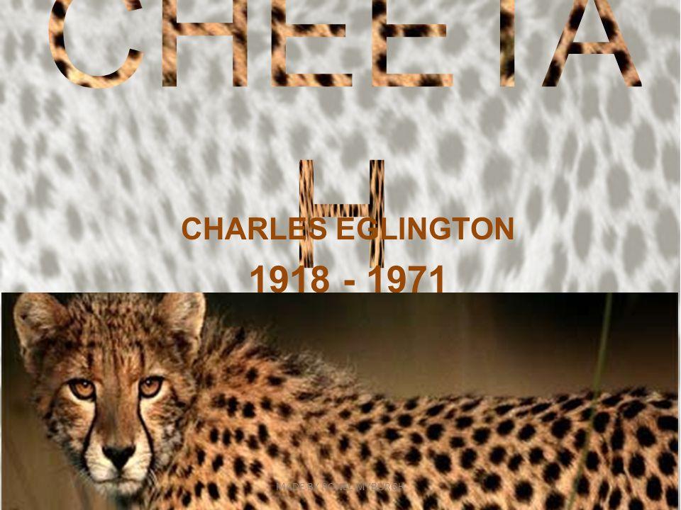 CHEETAH CHARLES EGLINGTON 1918 - 1971 MADE BY RONEL MYBURGH