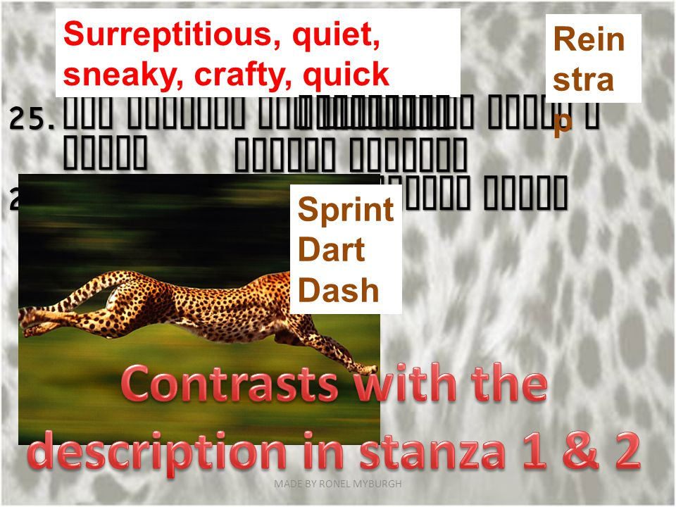 Contrasts with the description in stanza 1 & 2