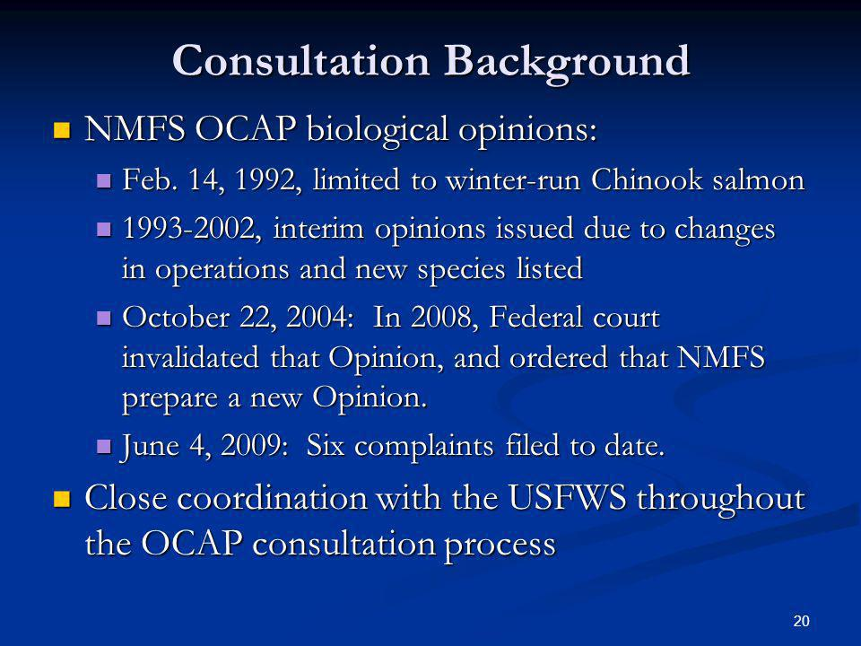 Consultation Background