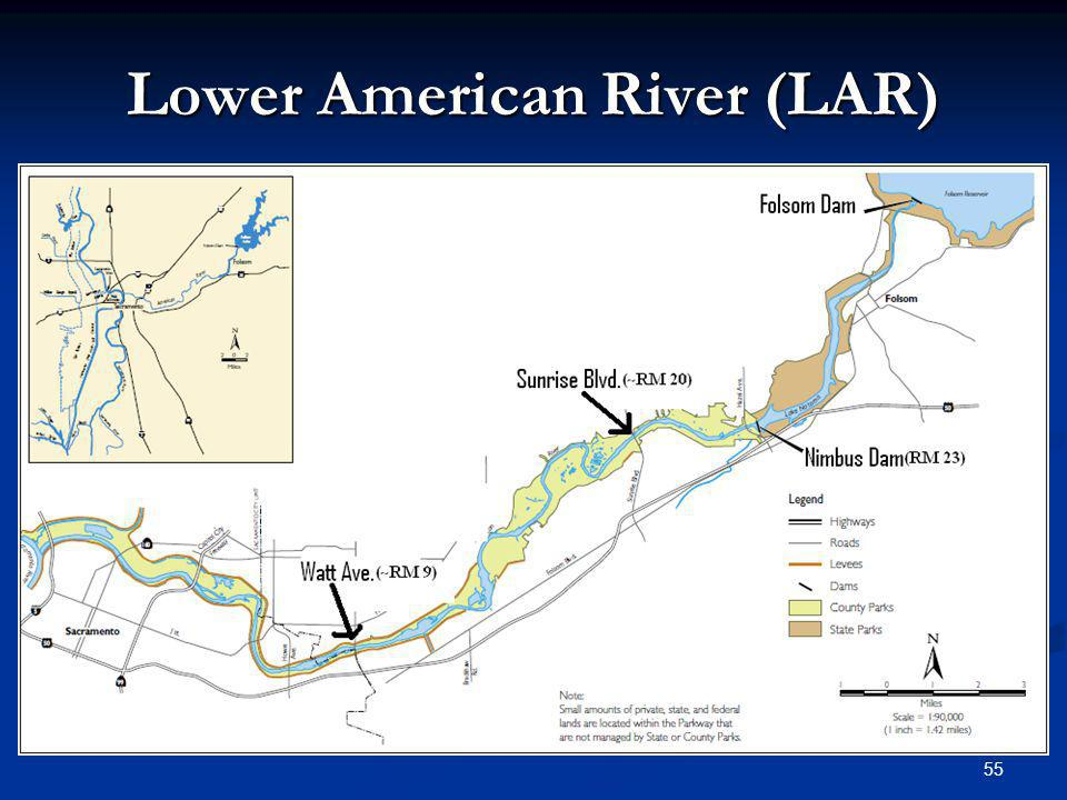 Lower American River (LAR)