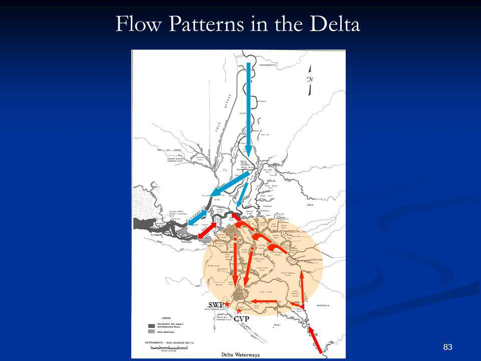 Flow Patterns in the Delta