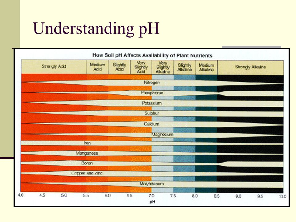 Understanding pH (chart of nutr. Avail. Here)
