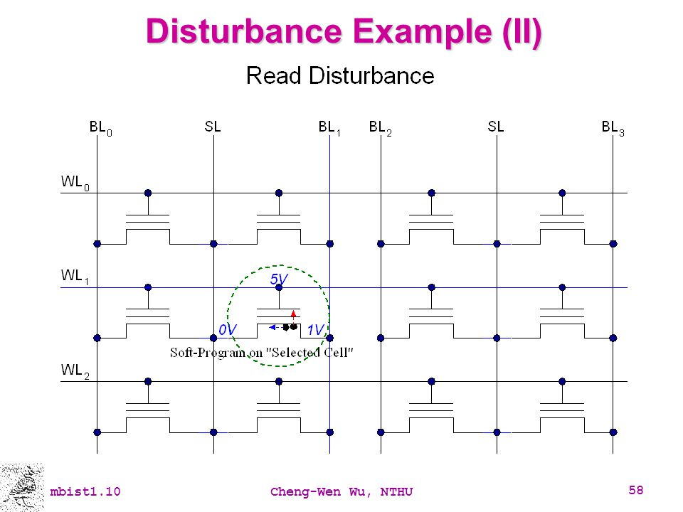 Disturbance Example (II)