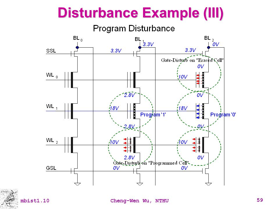 Disturbance Example (III)