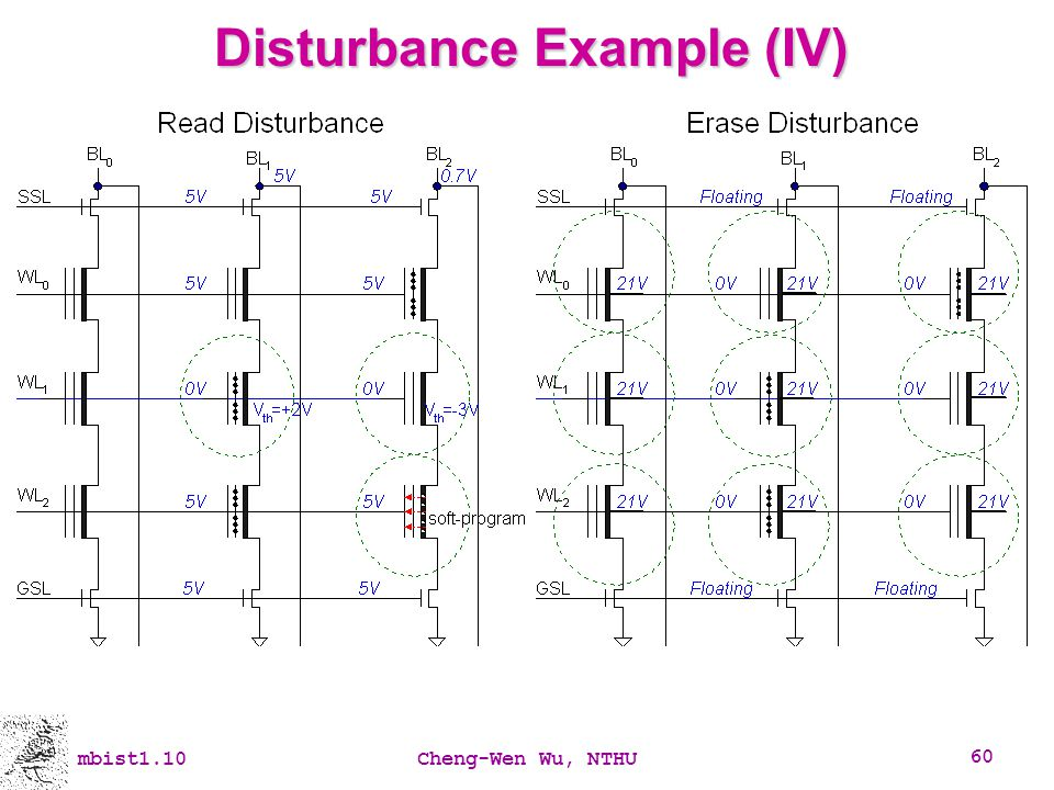 Disturbance Example (IV)