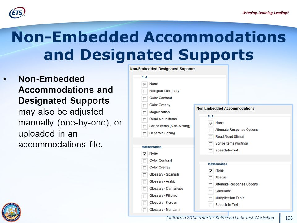Non-Embedded Accommodations and Designated Supports