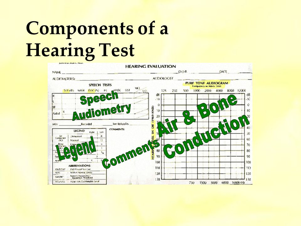 Components of a Hearing Test