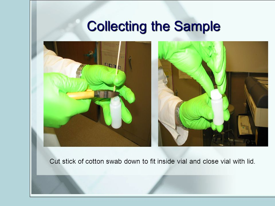 Collecting the Sample Cut stick of cotton swab down to fit inside vial and close vial with lid.